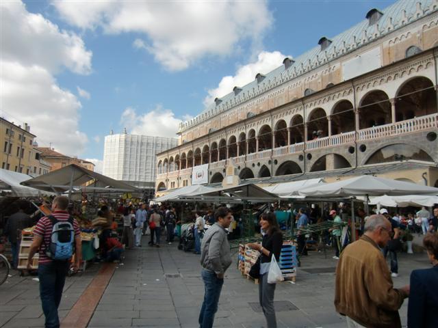 Wochenmarkt in Padua rund um den Palazzo della Ragione - Blog Topfgartenwelt