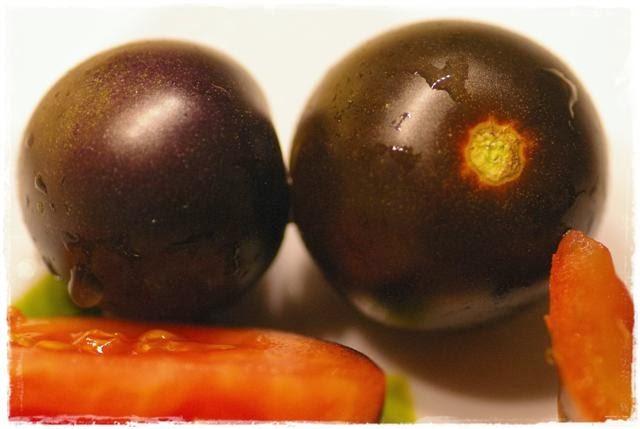 Tomaten - Gartenblog Topfgartenwelt