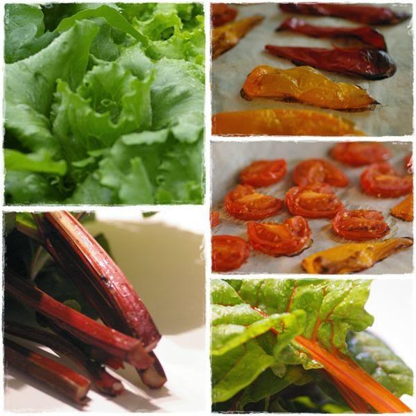 Gemüse - Gartenblog Topfgartenwelt
