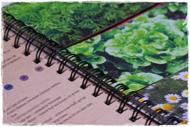 Erbse liebt Radieschen | Gartenbuch!
