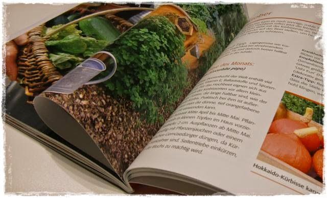 Auszug aus Hochbeet-Gärtnern - Gartenblog Topfgartenwelt