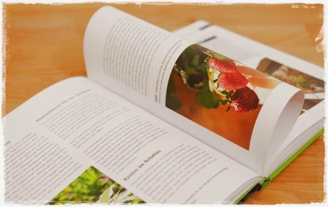 Auszug aus dem Buch Balkon-Starter - Gartenblog Topfgartenwelt