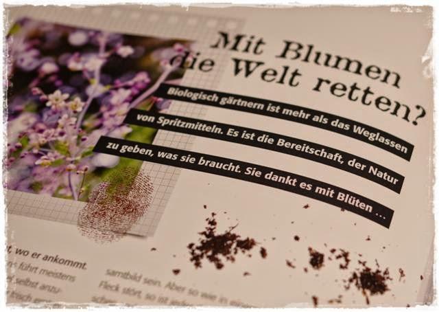 Auszug aus Bio-Starter - Gartenblog Topfgartenwelt