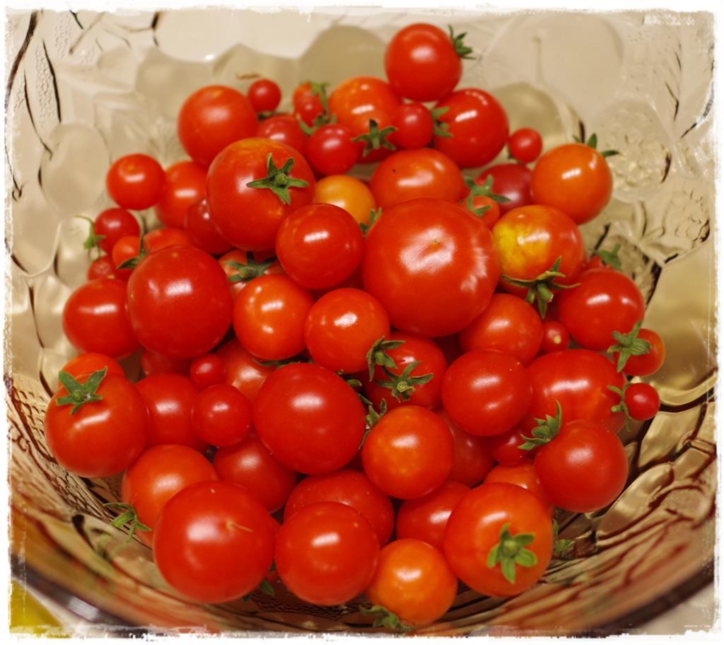 Tomatensugo einkochen | einrexen - Foodblog Topfgartenwelt