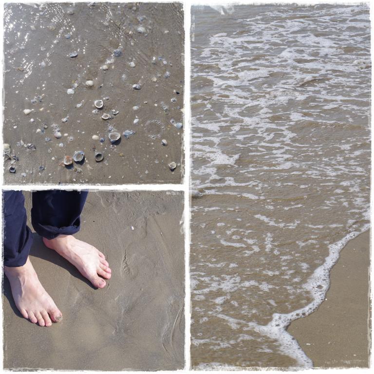 Strand in Caorle - Blog Topfgartenwelt