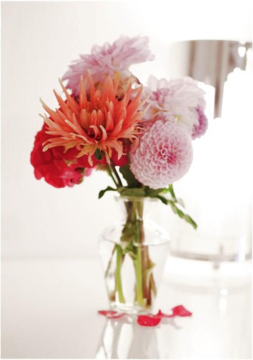 Dahlien in der Blumenvase - Blog Topfgartenwelt