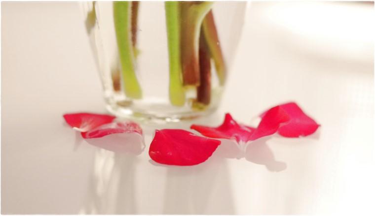 abgefallene Blüten - Blog Topfgartenwelt