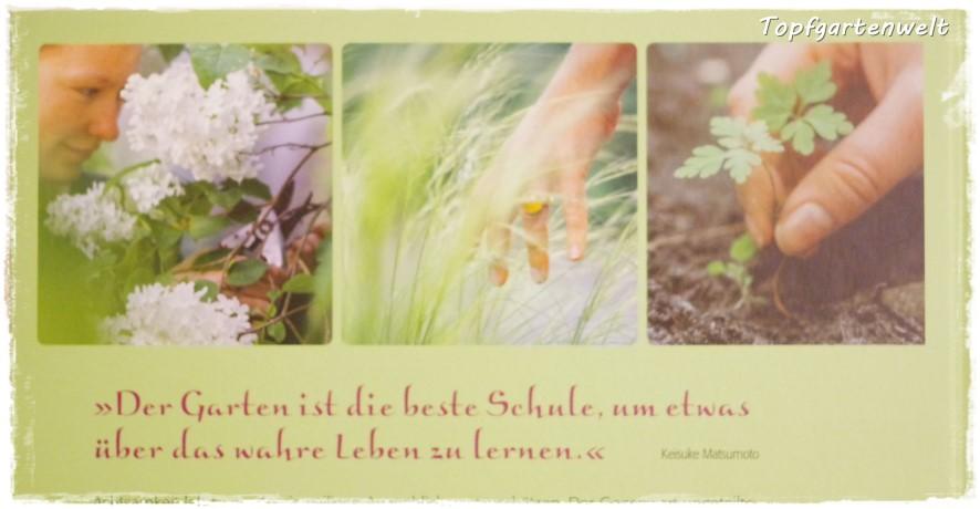 Achtsam gärtnern - Gartenblog Topfgartenwelt