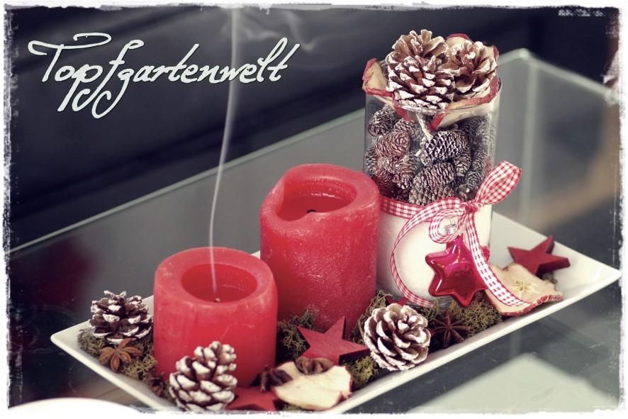 Gute-Laune-Roman - Blog Topfgartenwelt