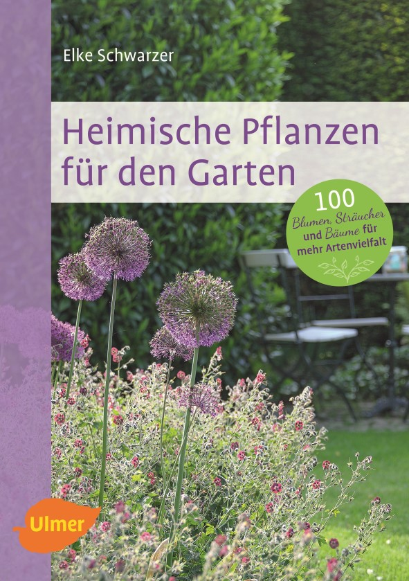 Heimische Pflanzen für den Garten - Gartenblog Topfgartenwelt