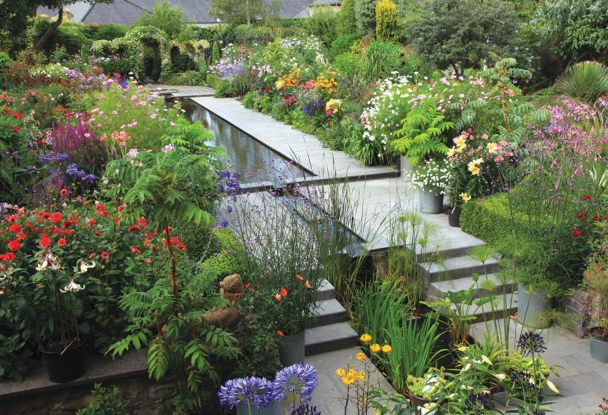 Blühende Beete - Gartenblog Topfgartenwelt