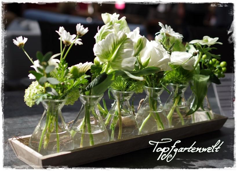 Blumenarrangement Gartenmesse Stuttgart 2016 - Blog Topfgartenwelt