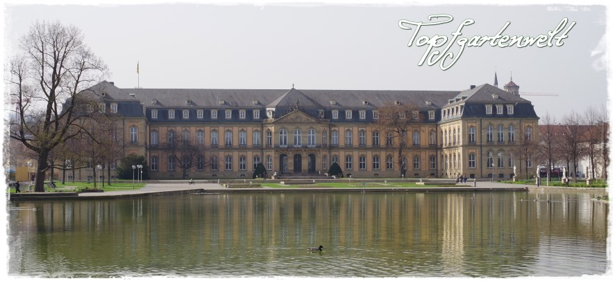 Schloss in Stuttgart - Blog Topfgartenwelt
