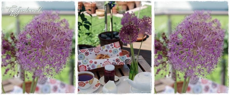 Brunch im Garten und ein Calciumdünger für das Gemüsereich im Test!