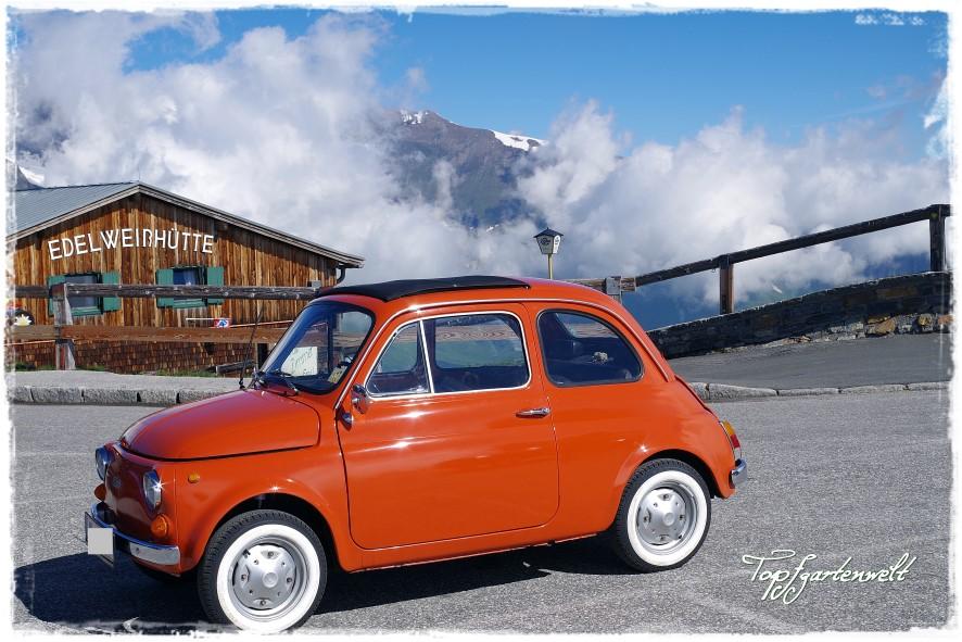 höchster befahrbarer Punkt | Großglockner | Edelweißhütte | Oldtimer - Blog Topfgartenwelt