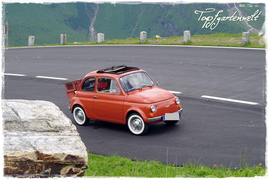 Großglockner Hochalpenstraße | Oldtimer | Fiat 500 - Blog Topfgartenwelt