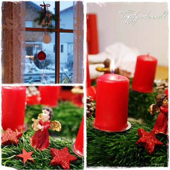 Gartenblog Topfgartenwelt Weihnachten: Adventkranz