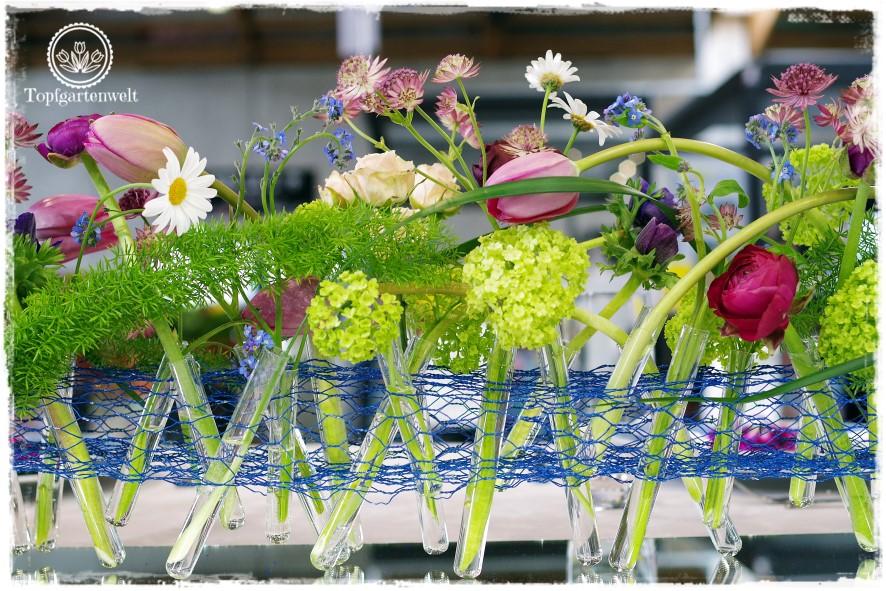 Gartenblog Topfgartenwelt Gartenmesse: Garten Salzburg 2017 Hochzeitsfloristik mit Sterndolden