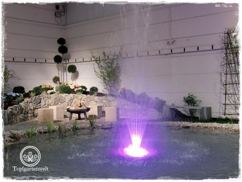 Gartenblog Topfgartenwelt Gartenmesse Blühendes Österreich 2017: Schaugarten mit Wasserfondäne
