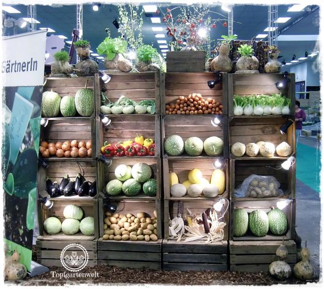 Gartenblog Topfgartenwelt Gartenmesse Blühendes Österreich 2017: Schaugarten mit Gemüse in Kisten