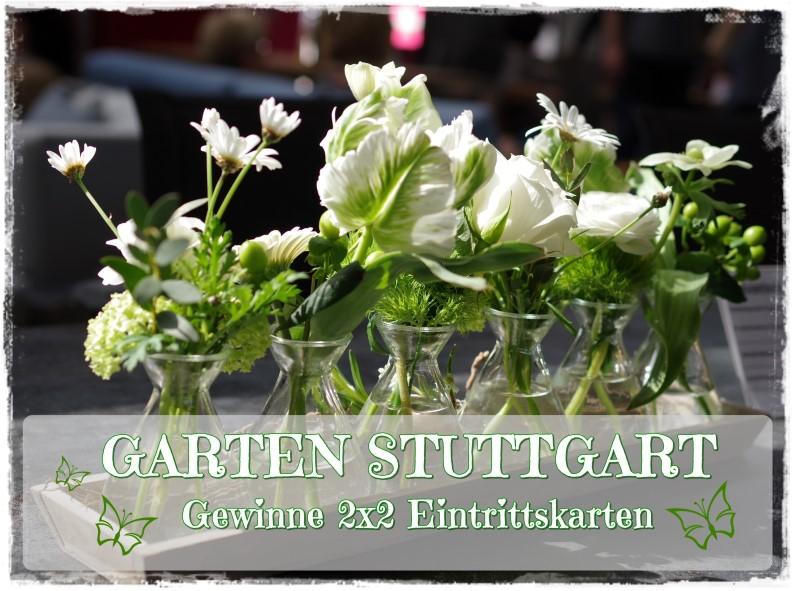 Gewinnspiel Gartenmesse Stuttgart 2017 und ein Blick in meinen Frühlingsgarten!
