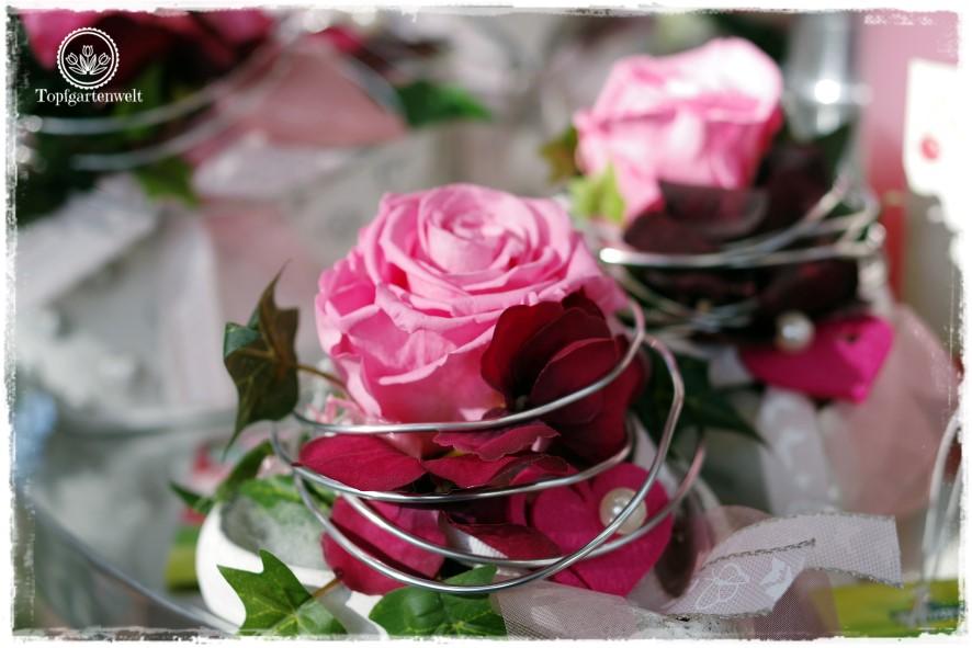 Gartenblog Topfgartenwelt Eröffnung Gartencenter Dehner Salzburg: Gesteck mit rosa Longlife Rosen