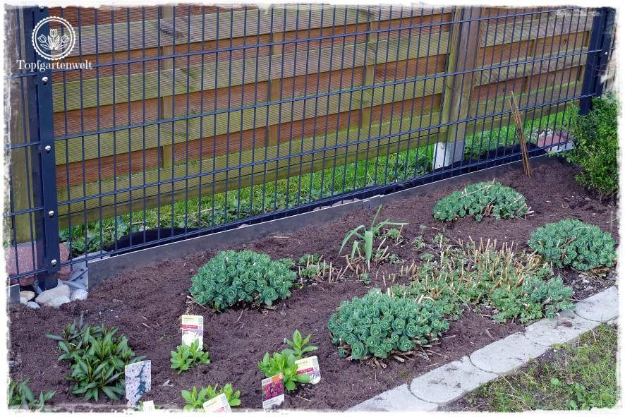 Gartenblog Topfgartenwelt Unkrautvlies im Test: das verlegte Unkrautvlies sieht schon ganz passabel aus