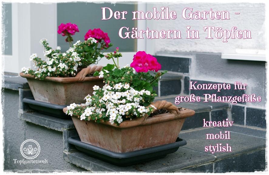 Der mobile Garten – Konzepte für große Pflanzgefäße   Gartenbuch!