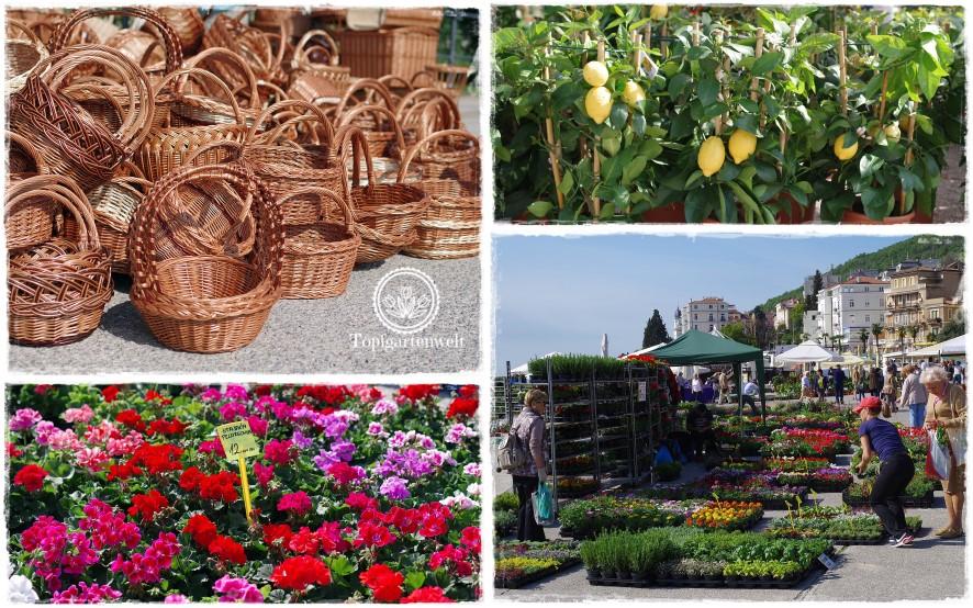 Gartenblog Topfgartenwelt Kroatien: Wochenmarkt in Opatija