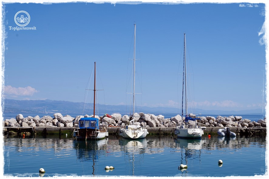 Gartenblog Topfgartenwelt Kroatien: Yachthafen in Icici