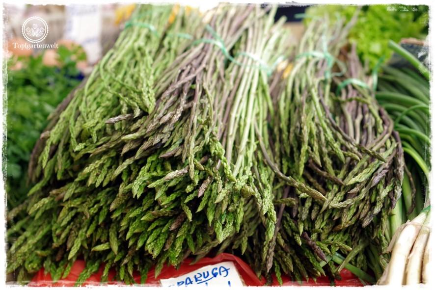 Gartenblog Topfgartenwelt Kroatien: wilder Spargel - Spezialität in Istrien