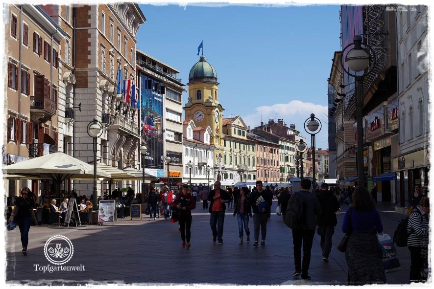 Gartenblog Topfgartenwelt Kroatien: Rijeka Innenstadt