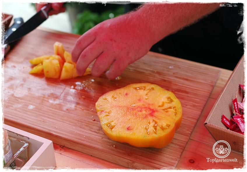 Gartenblog Topfgartenwelt The Grand Paradeis Show: Tomatensorte Ananas