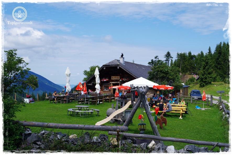 Gartenblog Topfgartenwelt Salzburg Almhütten: Bartlhütte auf der Saugsteigalm Zwölferhorn
