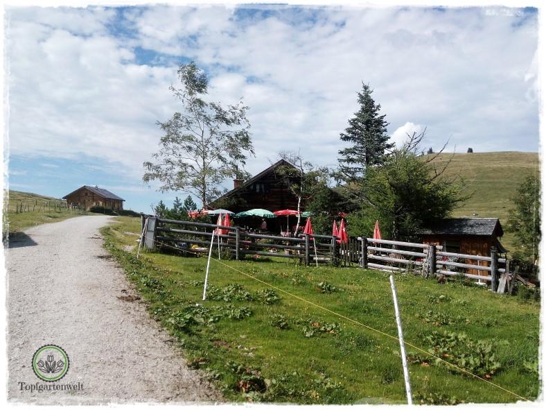 Gartenblog Topfgartenwelt Salzburg Almhütten: Wieslerhütte Postalm