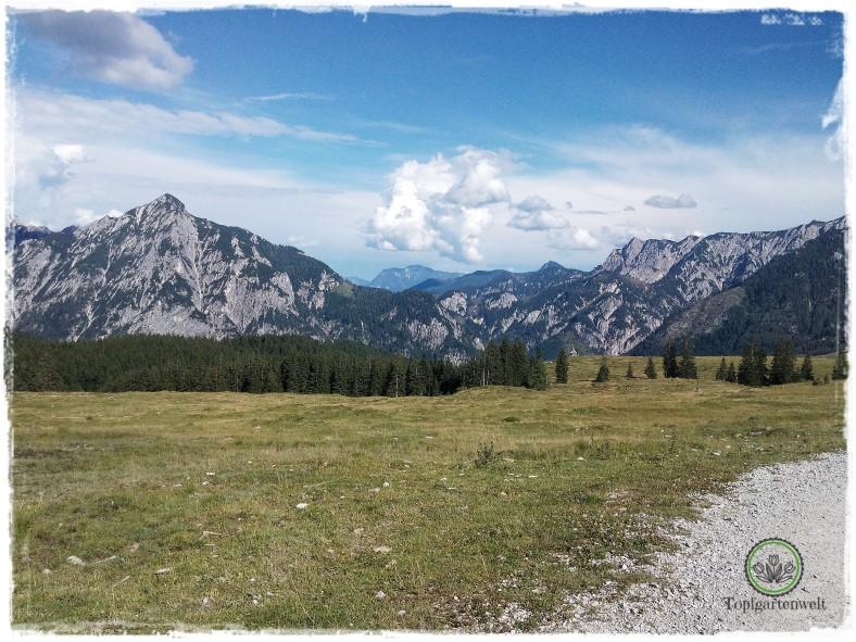 Gartenblog Topfgartenwelt Salzburg Almhütten: Panorama Postalm