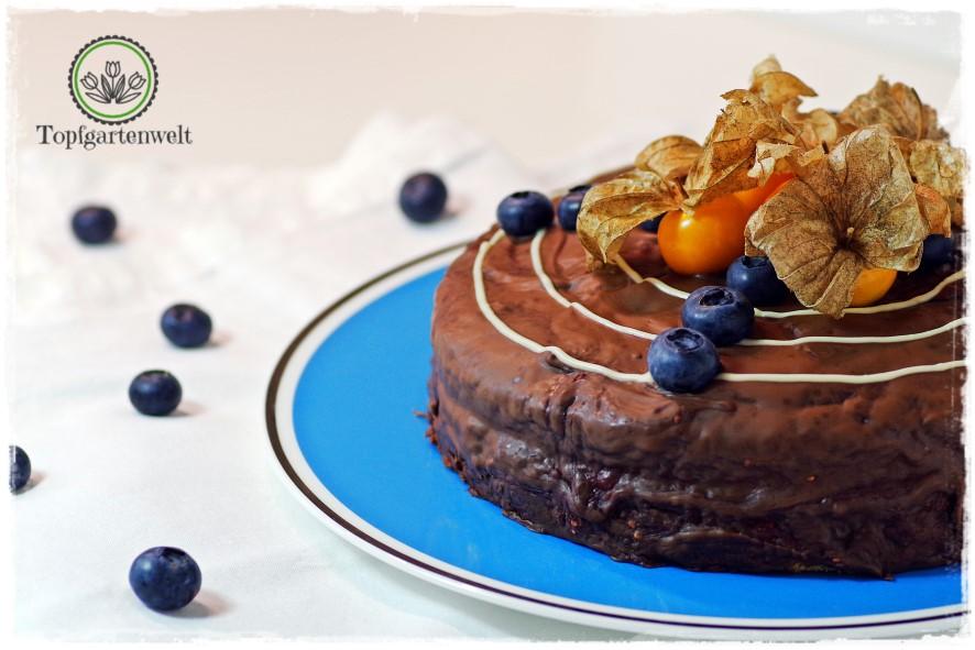 Gartenblog Topfgartenwelt Buchtipp Food Fotografie: Torte mit Blaubeeren und Physalis als Deko als Fotomodell