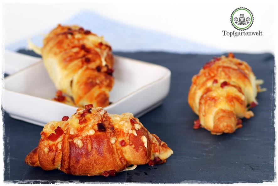 Gartenblog Topfgartenwelt Buchtipp Food Fotografie: Croissants mit Käse und Speck überbacken als Fotomodell
