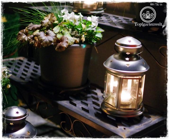 Gartenblog Topfgartenwelt festliche Weihnachtsdekoration in Rot und Weiß + Rezept Flammkuchen: weihnachtliche Laterne