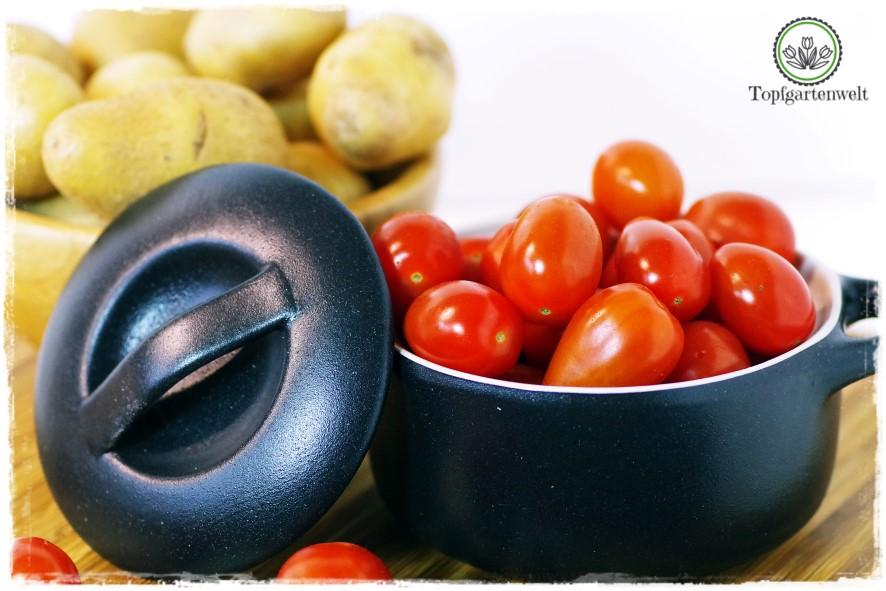 Gartenblog Topfgartenwelt Buchvorstellung Blech-Kochbuch 1 Blech 50 Rezepte: Food-Fotografie Ofenlachs nach provenzialischer Art