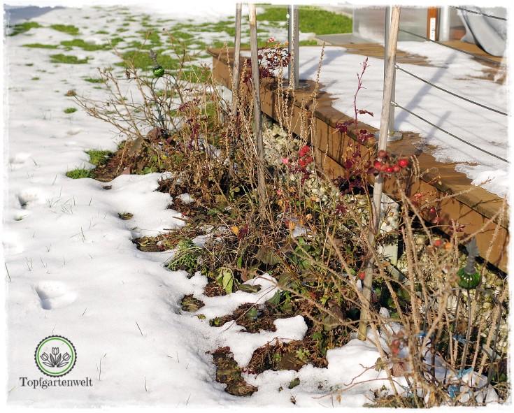 Gartenblog Topfgartenwelt erste Gartenarbeiten im Frühjahr Checkliste: Gartenpflege nach dem Winter