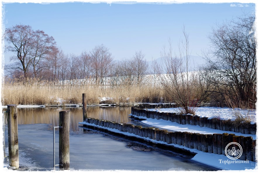 Gartenblog Topfgartenwelt Diana lernt Fotografieren Wallersee im Winter: Lehrbuch Fotografie