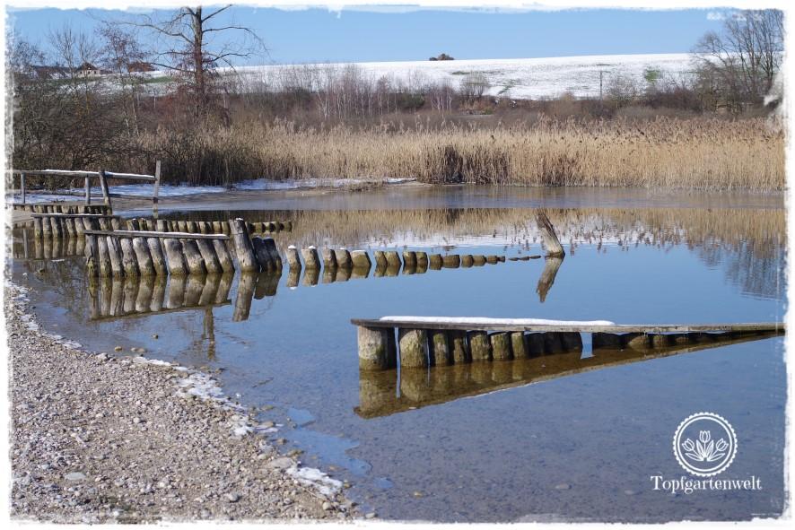 Gartenblog Topfgartenwelt Diana lernt Fotografieren Wallersee im Winter: fotografieren für Dummies