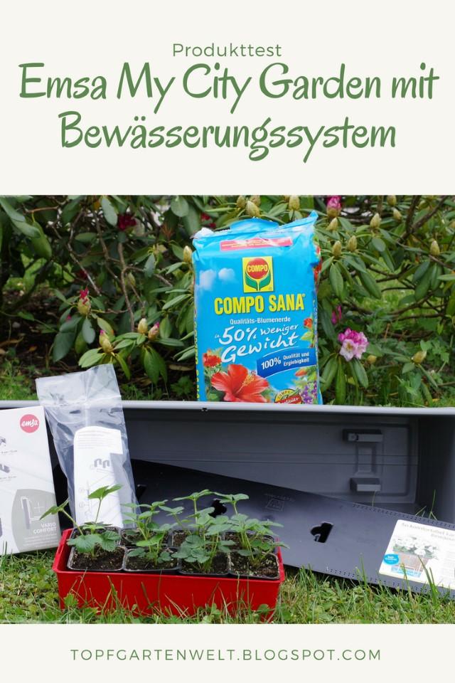 Produkttest Emsa My City Garden Balkonkasten mit Bewässerungssystem - Food- und Gartenblog Topfgartenwelt #emsa #emsaliebe #meinstadtbalkon #balkonkastenmitbewässerungssystem #bewässerung #balkonkasten
