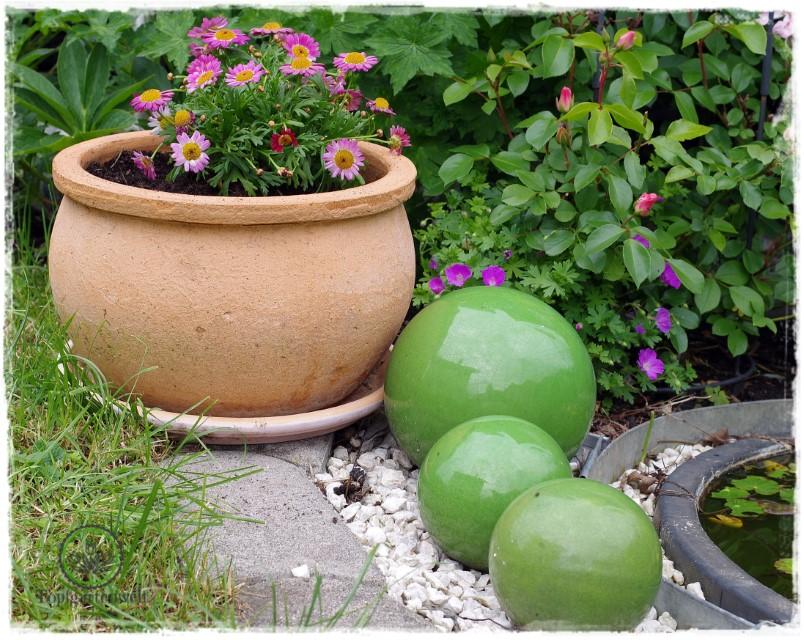 Gartenblog Topfgartenwelt Buchtipp Senkrecht Gärtnern - Gartendeko - Einfassung Miniteich