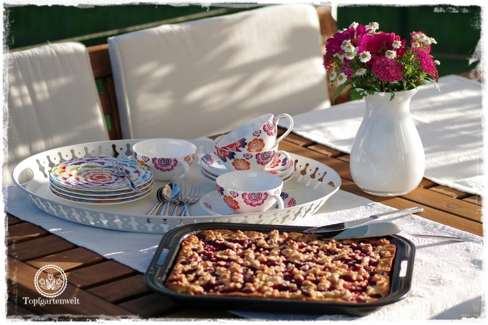 Rhabarber-Streuselkuchen mit Heidelbeeren aus Topfen-Ölteig - Gartenblog Foodblog Topfgartenwelt