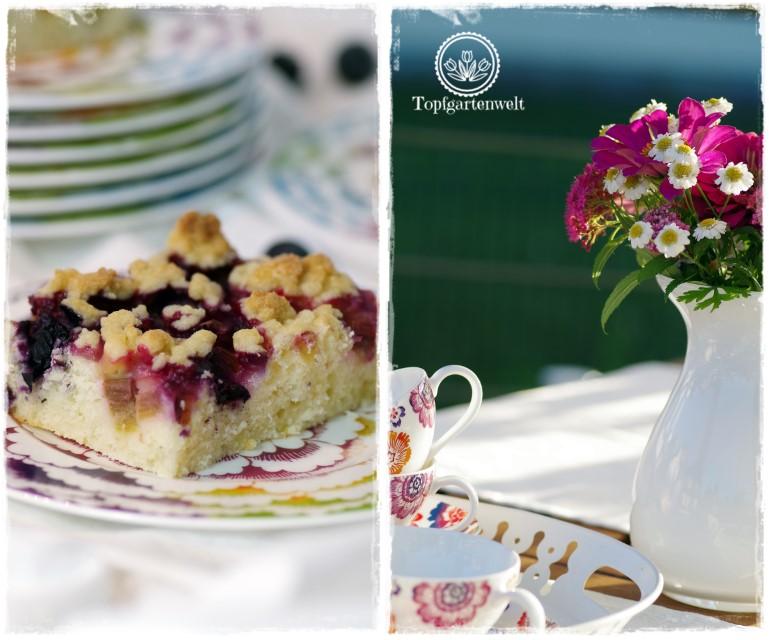 Topfenstreuselkuchen mit Rhabarber und Heidelbeeren - Gartenblog Foodblog Topfgartenwelt