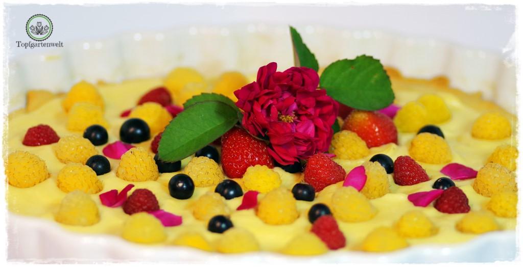 Rosentarte aus Duftrosen - Foodblog Topfgartenwelt