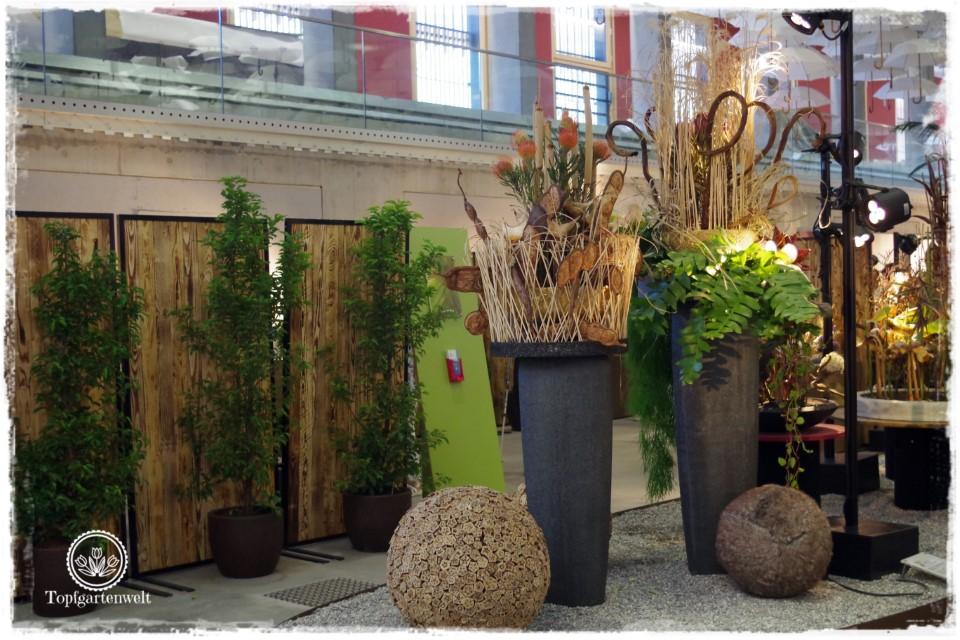 Blumenhalle Landesgartenschau Lahr 2018 Baden-Württemberg - Gartenblog Topfgartenwelt