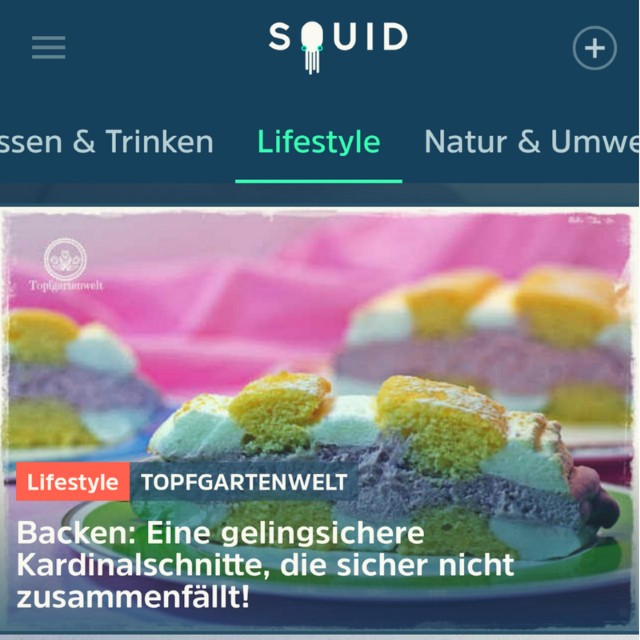 Traffic für den Blog mit Squid App?